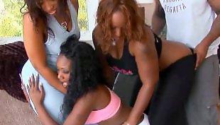 Ebony blowjob, Ebony lesbians, Bbw lesbian, Face sitting, Milf lesbian, Lesbian dildo