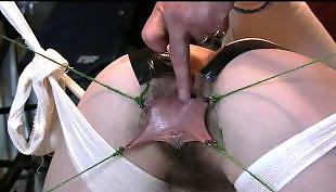 Bondage, Hairy dildo, Hairy close up, Hairy, Close up dildo, Hairy toy